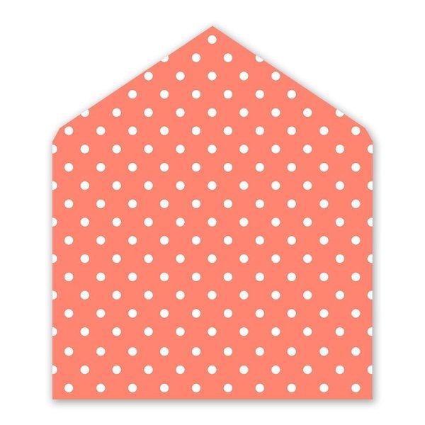 Modern Style Envelope Liner